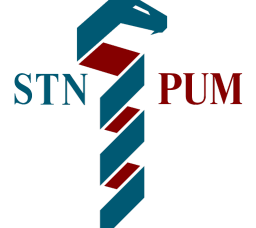 cropped-STN-logo-mini-.png